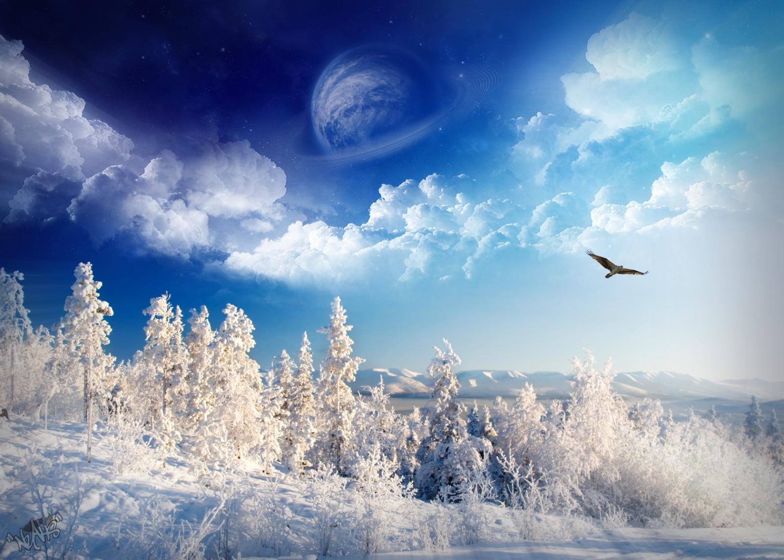 Vianočný ošiaľ menom  Winter Wonderland