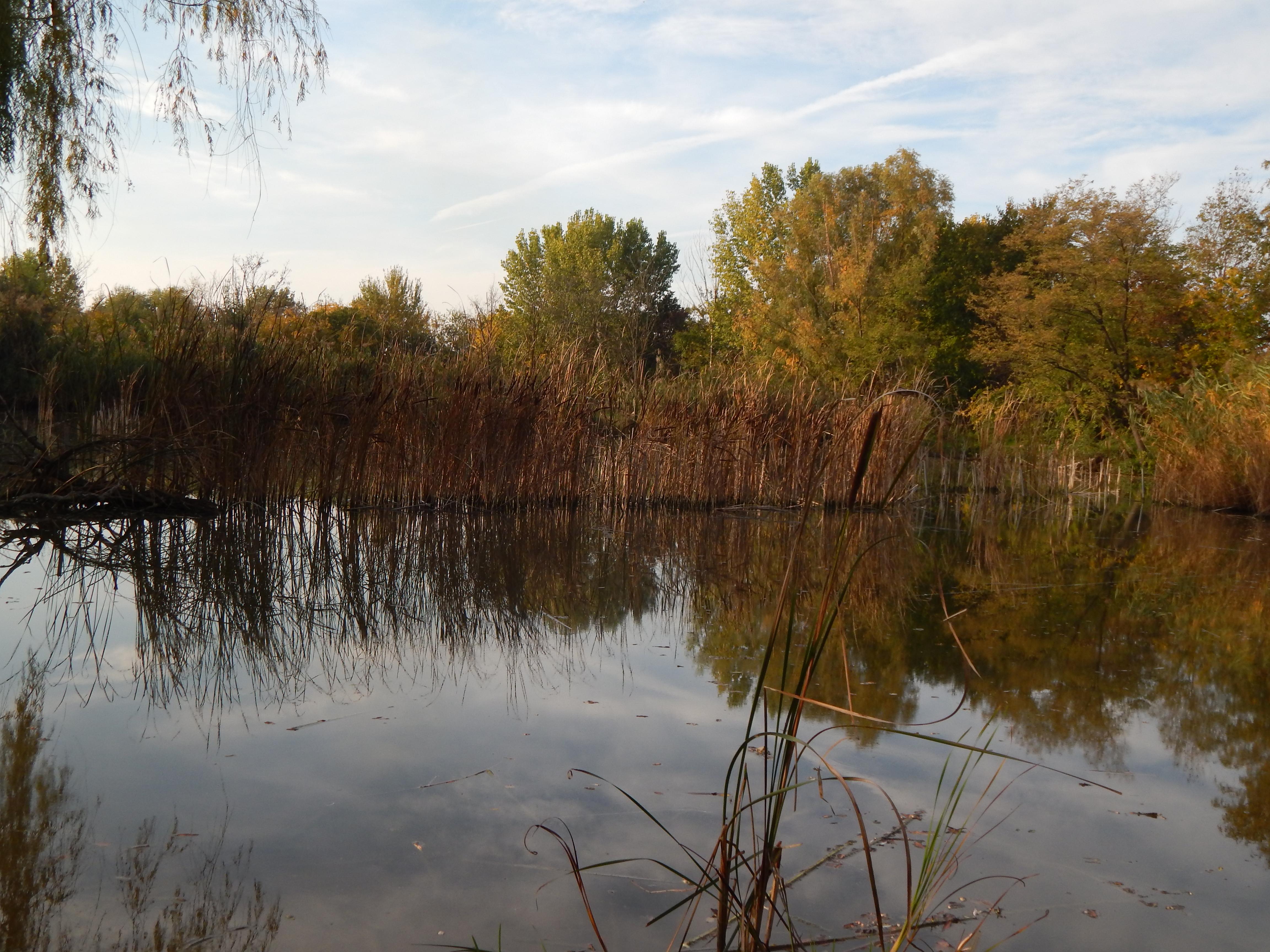 Na rybolov lákajú obyvateľov z Vojvodiny pivničské jazerá.