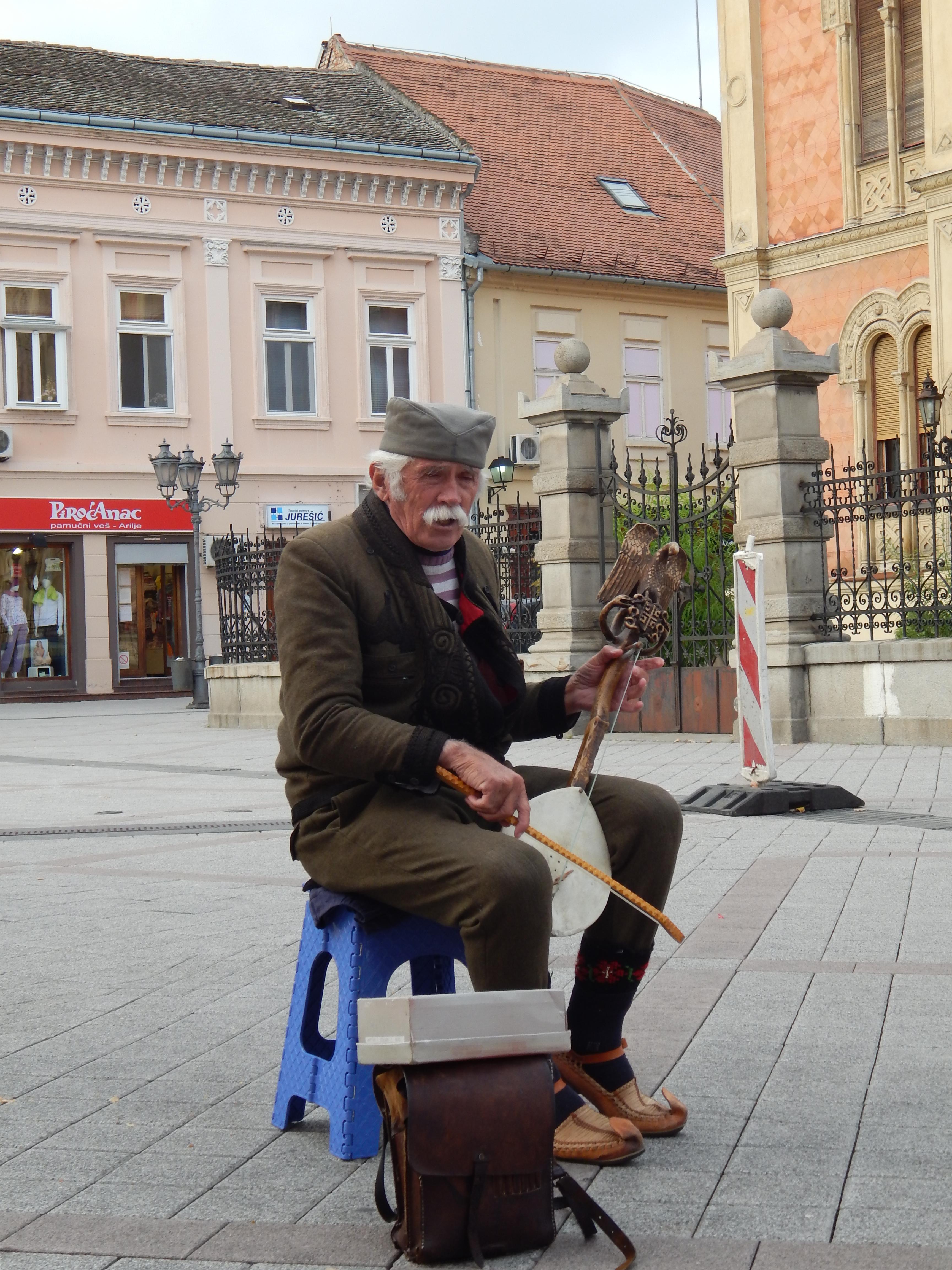 Srbský národný hudobný nástroj gusle.
