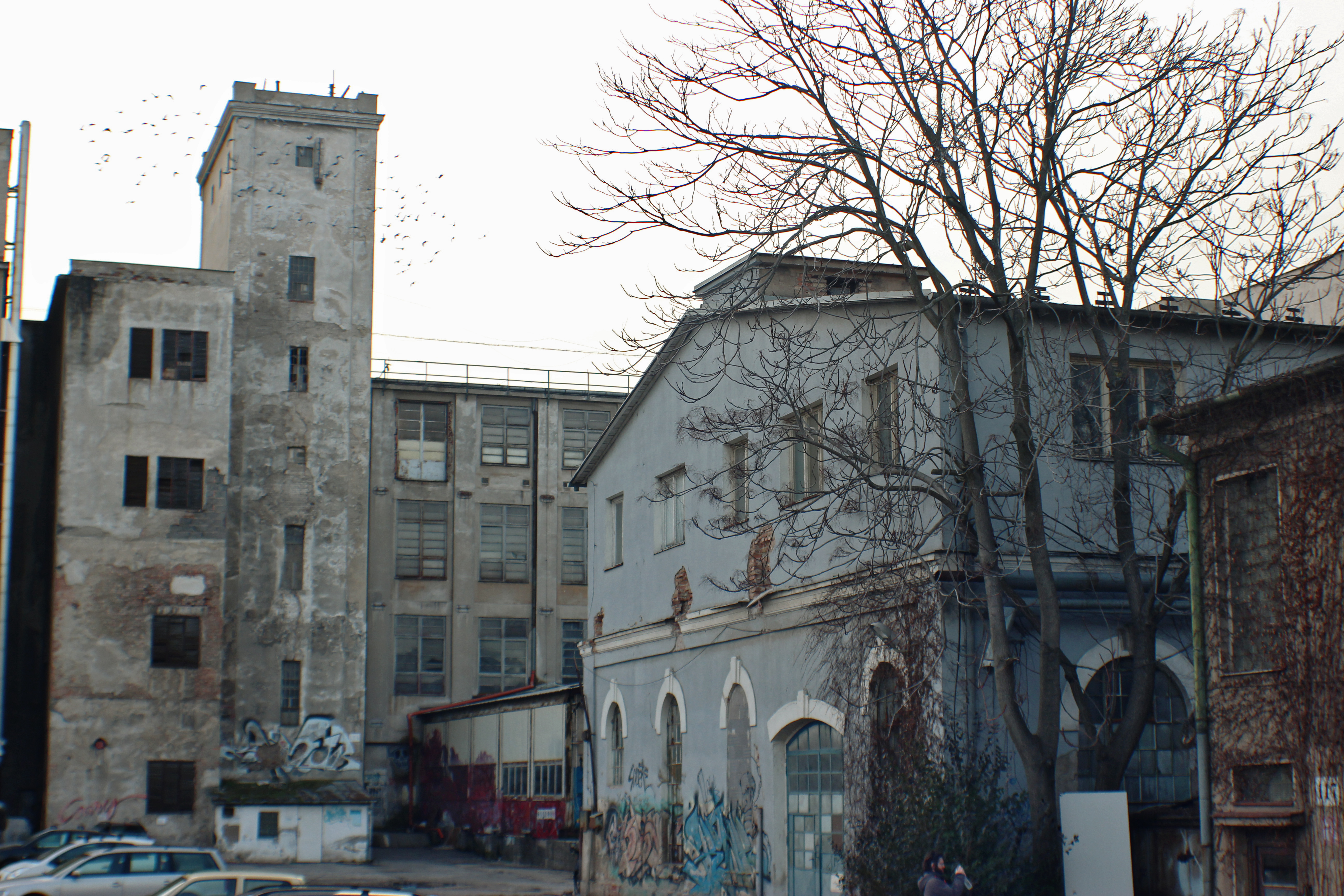 Bratislavská Cvernovka prežila dve svetové vojny a niekoľko politických režimov. Dnes je jej budúcnosť neistá.