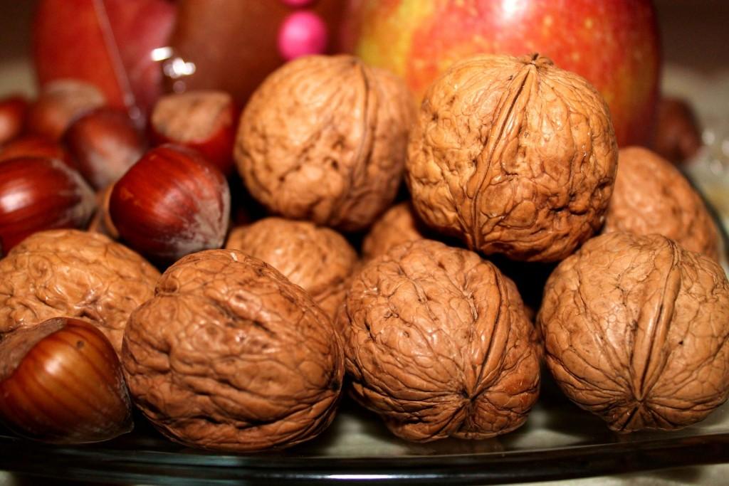 walnuts-558488_1920