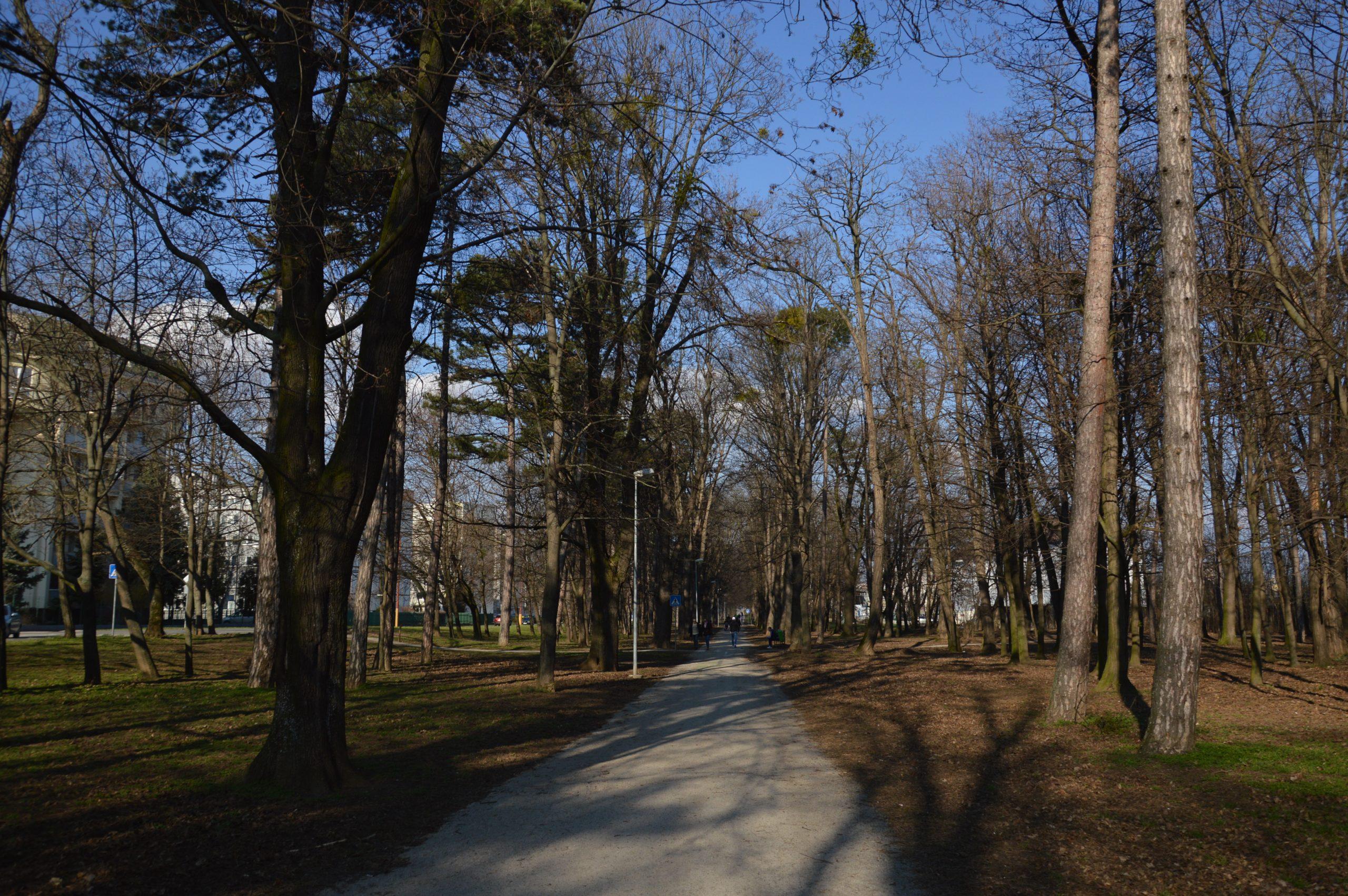 Park Janka Kráľa začiatkom Jari. Zdroj: Daniel Bíro