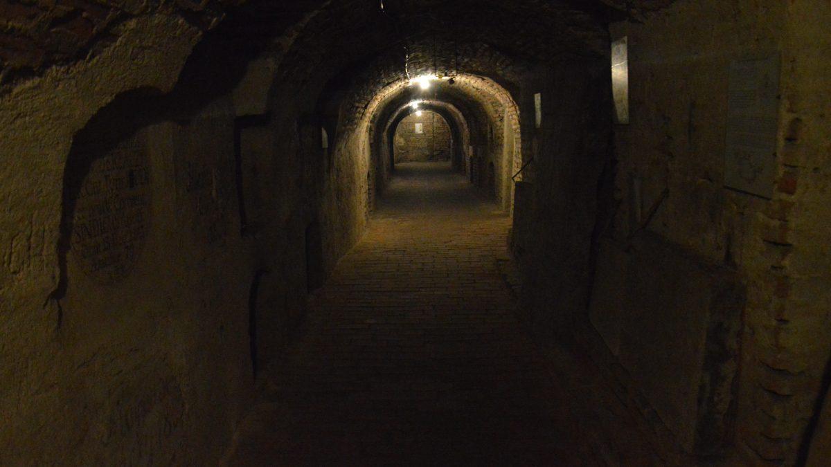 Do krýpt pochovávali aj obete epidémie. Čo ukrýva trnavské podzemie?
